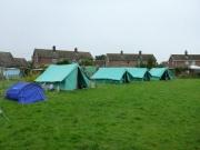 Cub Camp