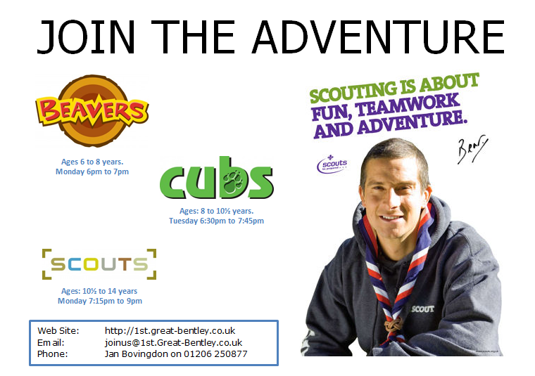Join Scouting - Bear